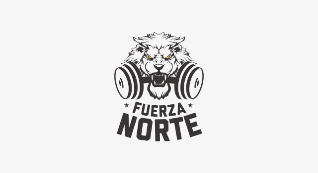 Fuerza Norte